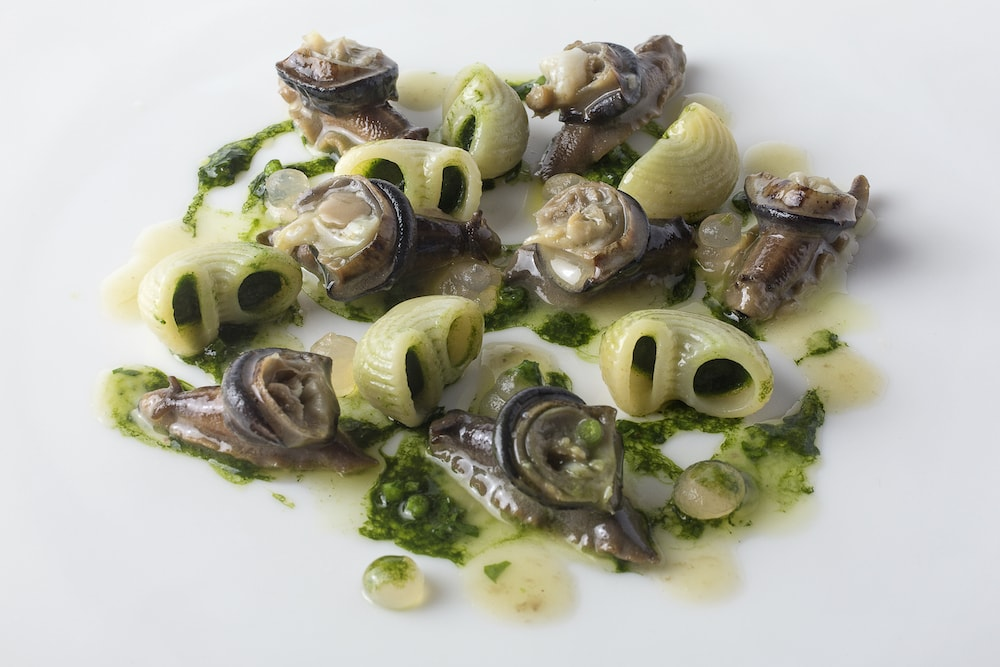 Gobbetti (pasta), snails, chicory and parsley