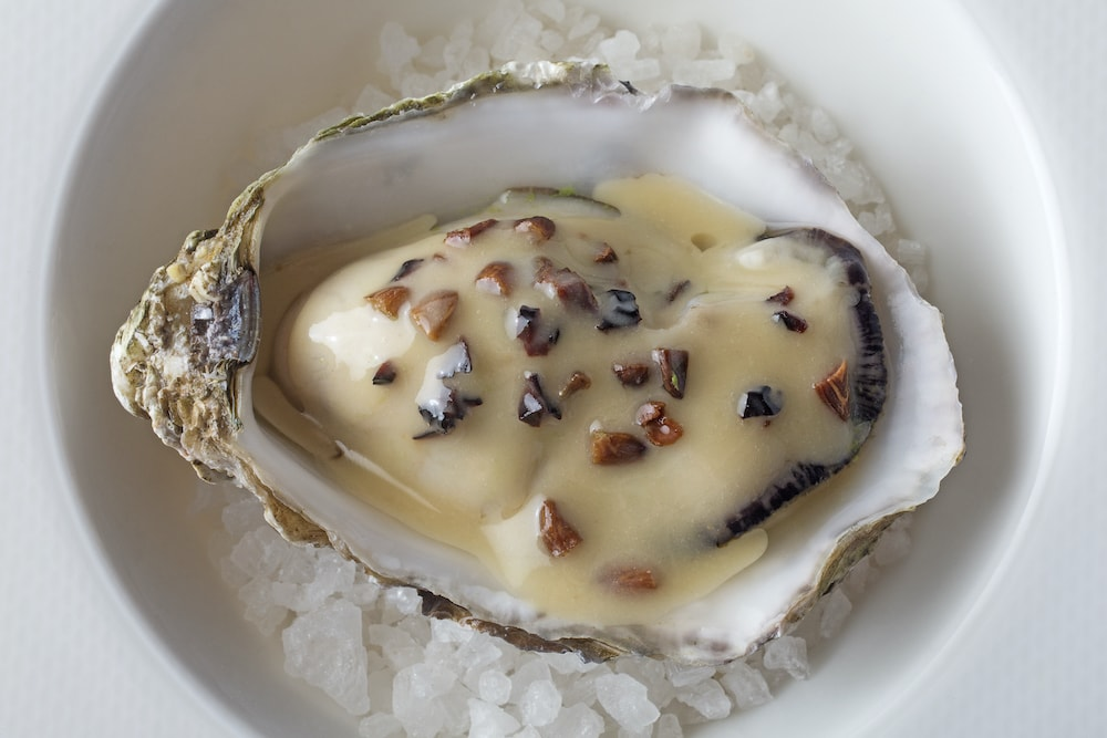 Oyster and ciauscolo